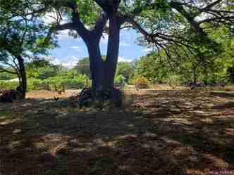 5835 Kamehameha V Hwy Kaunakakai HI 96748 - photo #1