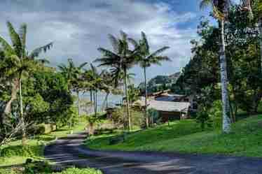 34-1106 Hawaii Belt Rd Ninole HI 96773 - photo #2