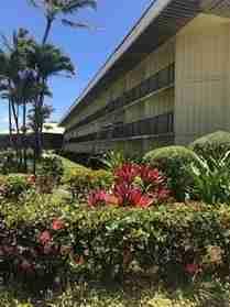 4331 Kauai Beach Dr #3312 Lihue HI 96766 - photo #0