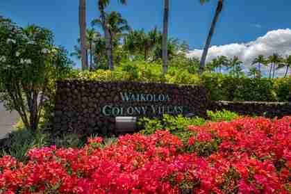 69-555 Waikoloa Beach Dr #2804 Waikoloa HI 96743 - photo #0