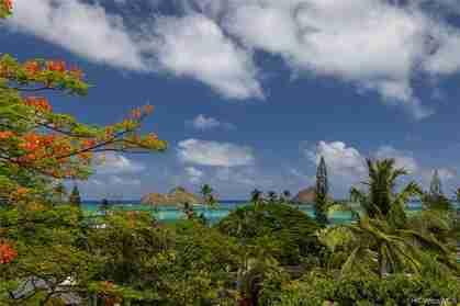 1319 Mokolea Dr Kailua HI 96734 - photo #3
