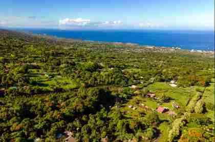 Holualoa HI 96725 - photo #2