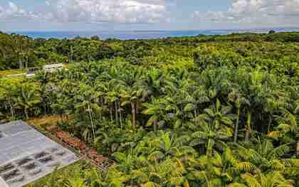 27-2760 Hawaii Belt Rd Pepeekeo HI 96783 - photo #0