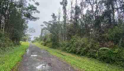 MAUI RD PAHOA HI 96778 - photo #0