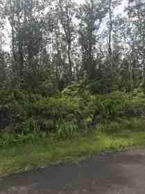 HAPUU RD PAHOA HI 96778 - photo #0