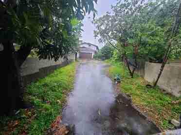 2754 Pali Hwy Honolulu HI 96817 Honolulu - photo #2