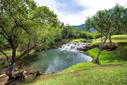 2818 Kamookoa Rd #1 Kilauea HI 96754 - photo #1