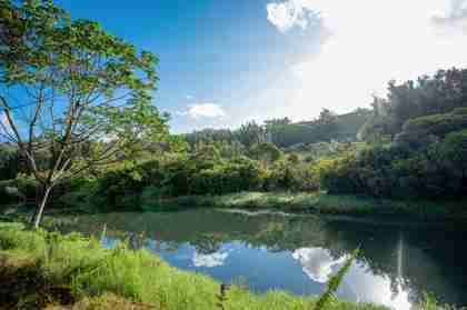 Kamookoa Rd #B & C Kilauea HI 96754 - photo #1
