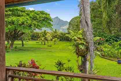 5940 Kahiliholo Rd #b Kilauea HI 96754 - photo #0