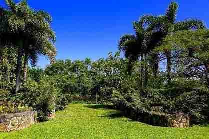 Anini Vista Dr #D Kilauea HI 96754 - photo #1