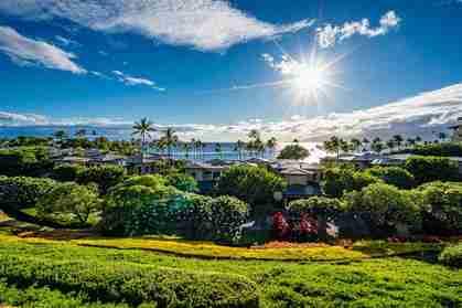 8 Coconut Grove Ln 8 Lahaina HI 96761 - photo #1