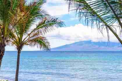 110 Kaanapali Shores Pl 204 Lahaina HI 96761 - photo #0
