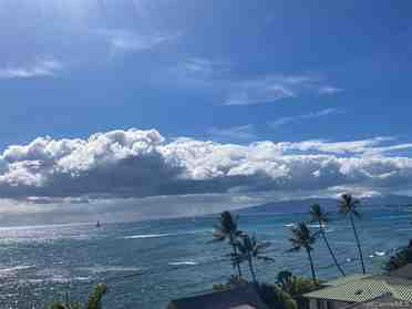 2801 Coconut Ave 6h Honolulu HI 96815