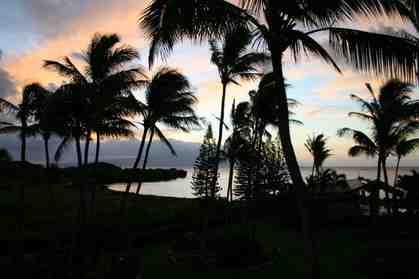 7146 Kamehameha V Hwy C309 Kaunakakai HI 96748