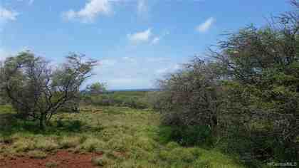 0 Pa Loa Loop Lot #4 Maunaloa HI 96770