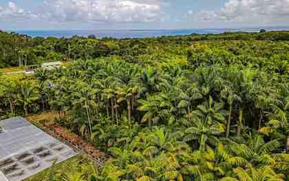 27-2760 Hawaii Belt Rd Pepeekeo HI 96783