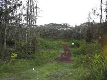 Mauna Kea Rd Pahoa HI 96778