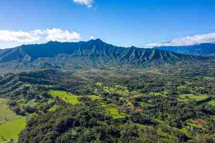 2818 Kamookoa Rd #1 Kilauea HI 96754