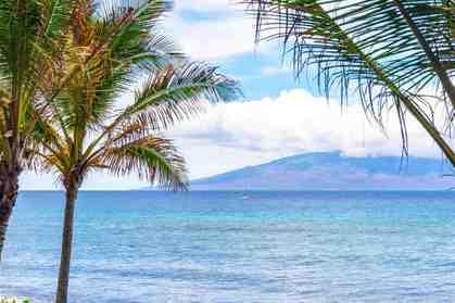 110 Kaanapali Shores Pl 204 Lahaina HI 96761